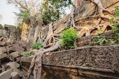 Fresques avec les modèles floraux en Beng Melea Temple Images libres de droits