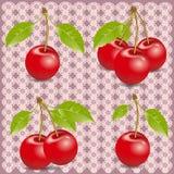 Fress cherrys on leace Stock Photo
