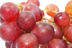 Frest grapes isolated Stock Photography