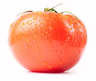 Frest wet tomato Stock Photo