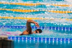 Frestyle swimming race Stock Photos