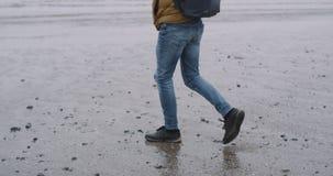 Freudig erregt Tourist kam in überraschendem Platz mit einem großen Strand und einem nass Sand an, die er sehr vom Platz mit eine stock video footage