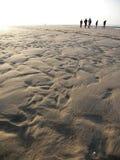 Freunde auf dem Strand Lizenzfreies Stockfoto