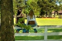 Freunde auf einem Zaun Lizenzfreie Stockfotos