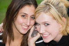Freunde auf Handy zusammen (schöne junge Blondine und Brune Lizenzfreie Stockfotografie