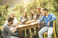 Freunde der glücklichen Menschen, die trinkenden Rotwein des Spaßes im Freien am Weinberg essen stockbild