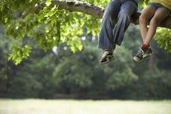 Freunde, die auf Baumast sich entspannen Stockbilder