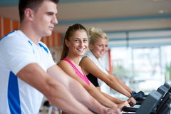 Freunde, die auf einer Tretmühle an der hellen modernen Turnhalle trainieren Lizenzfreies Stockbild