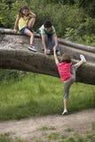 Freunde, die auf gefallenem Baum klettern Lizenzfreies Stockbild