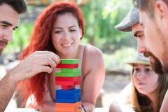 Freunde, die Blockspiel spielen Stockfotografie
