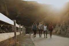 Freunde, die durch die Hügel von Los Angeles wandern stockbild