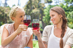 Freunde, die ihre Weingläser klirren Lizenzfreie Stockfotos
