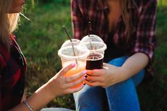 Freunde, die Saft auf grünem Gras im Park trinken lizenzfreie stockfotografie