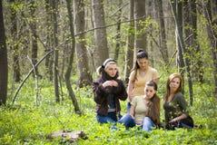 Freunde, die Spaß im Wald haben Stockbilder