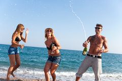 Freunde, die Spaß am Strand der Feier O haben. Stockbilder