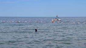 Freunde, die Tretboot und Schwimmer im Meer reiten stock footage