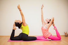 Freunde, die zusammen Yoga tun Stockfotografie