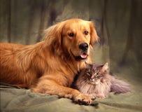 Freunde für das Leben Stockbild