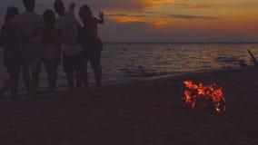 Freunde nähern sich Meer bei Sonnenuntergang stock video