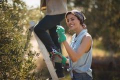 Freundin, die Zangen während Freund klettert auf Leiter am olivgrünen Bauernhof hält Lizenzfreie Stockbilder