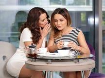Freundin in einem trinkenden Tee und einem Tratsch des Cafés Lizenzfreies Stockbild