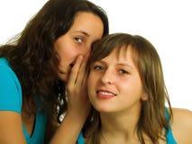 Freundinnen Lizenzfreie Stockbilder