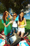 Freundinnen auf Picknick Stockfotografie