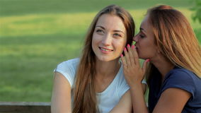 Freundinnen, die auf einer Parkbank sitzen stock footage