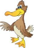 Freundliche Ente Stockfoto