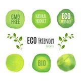 Freundliche Naturprodukt-Aquarellaufkleber Eco Organisches neues Nahrungsmittelkonzept Stockfotografie
