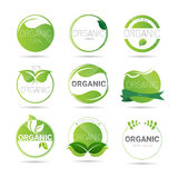 Freundliche organische Naturprodukt-Netz-Ikonen-gesetztes grünes Logo Eco vektor abbildung