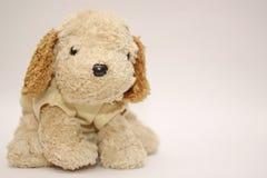 Freundliche und nette Hundepuppe Stockbild