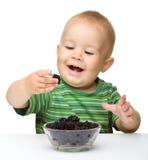 Freundlicher kleiner Junge isst Brombeere Lizenzfreies Stockbild