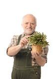 Freundliches älteres Mannholding-Betriebslächeln Stockfoto