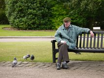 Freundschaft im Park Stockbilder