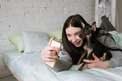 Freundschaft zwischen Hund und Eigentümer stockbilder