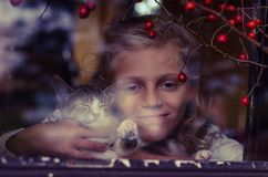 Freundschaft zwischen Mädchen und Katze hinter Fenster Lizenzfreie Stockfotografie
