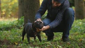 Freundschaft zwischen Menschen und Haustieren stock footage