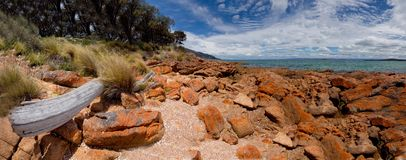 Freycinet beach. Beautiful beach in the freycinet national park Royalty Free Stock Image
