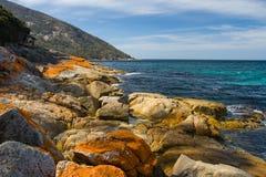 Freycinet strand Fotografering för Bildbyråer