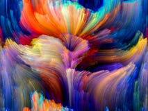 Färgblomma Royaltyfri Fotografi