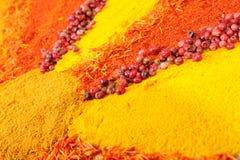färgglada kryddor Arkivfoton