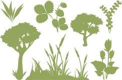 färgillustrationen planterar silhouettes Royaltyfria Bilder