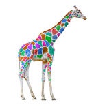 Färgrik giraff Arkivbild