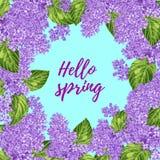Färgrik hand dragen blom- bakgrund med lilan Fotografering för Bildbyråer