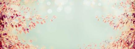 Färgrik höstträdfilial med röda sidor på ljus - blå bokehbakgrund, baner Royaltyfria Foton
