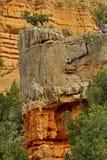 Färgrik röd kanjon i Utah Arkivbilder