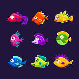 Färgrik tropisk fisksamling Royaltyfria Bilder