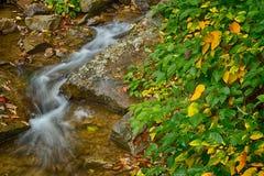 Färgrika Autumn Cascade Royaltyfri Bild