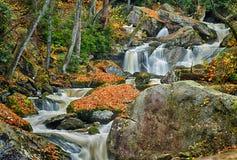 Färgrika Autumn Waterfall i träna Royaltyfria Bilder